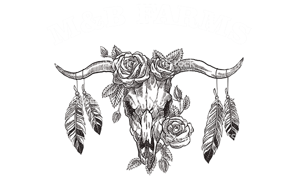M&B Farms logo